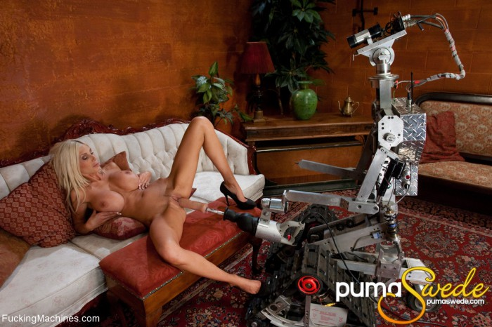 Puma Swede Toying